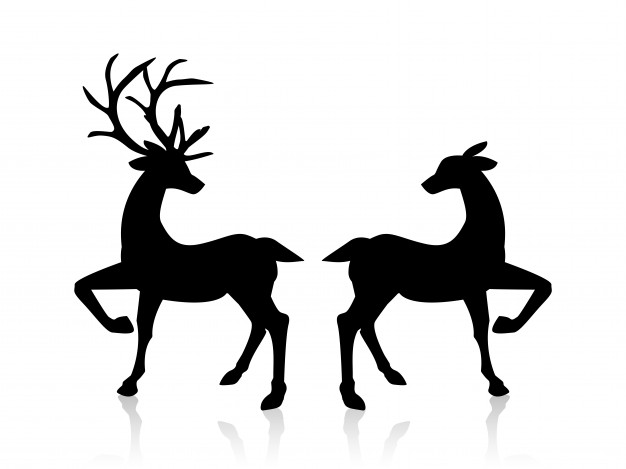 626x469 Reindeer Vectors, Photos And Psd Files Free Download