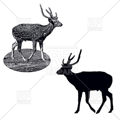 400x400 Silhouette And Shading Style Profile Of Male Of Spotted Deer