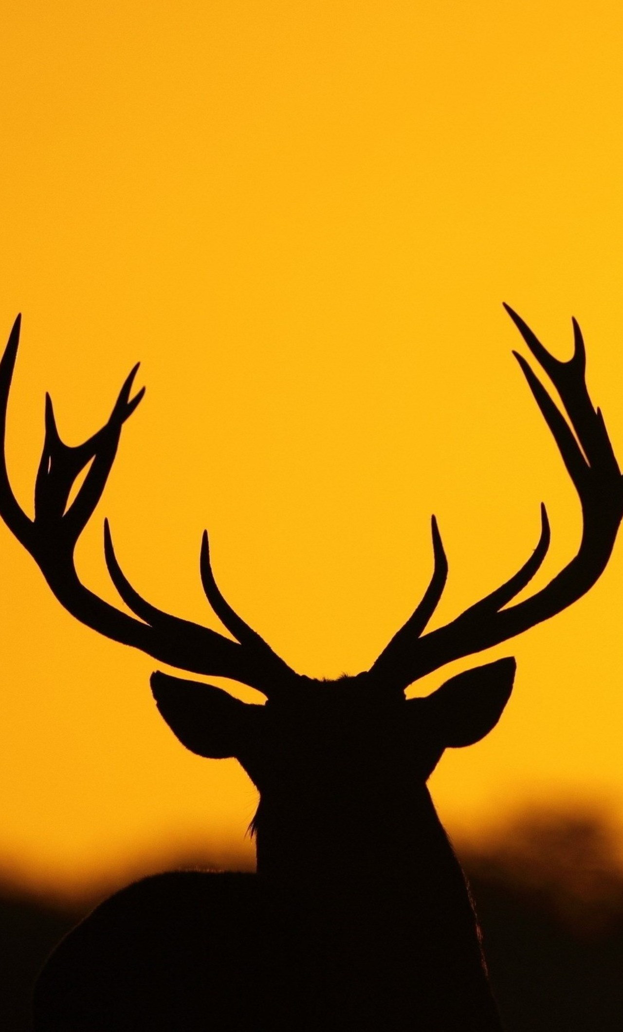 Deer Horn Silhouette