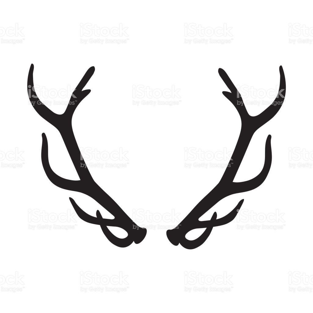 1024x1024 Horns Clipart Deer Antler Pencil And In Color Picturesque