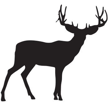 350x350 North American Hunting Outfitter Directory