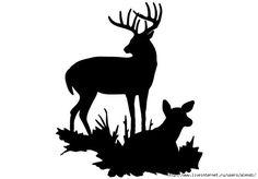 236x164 Deer
