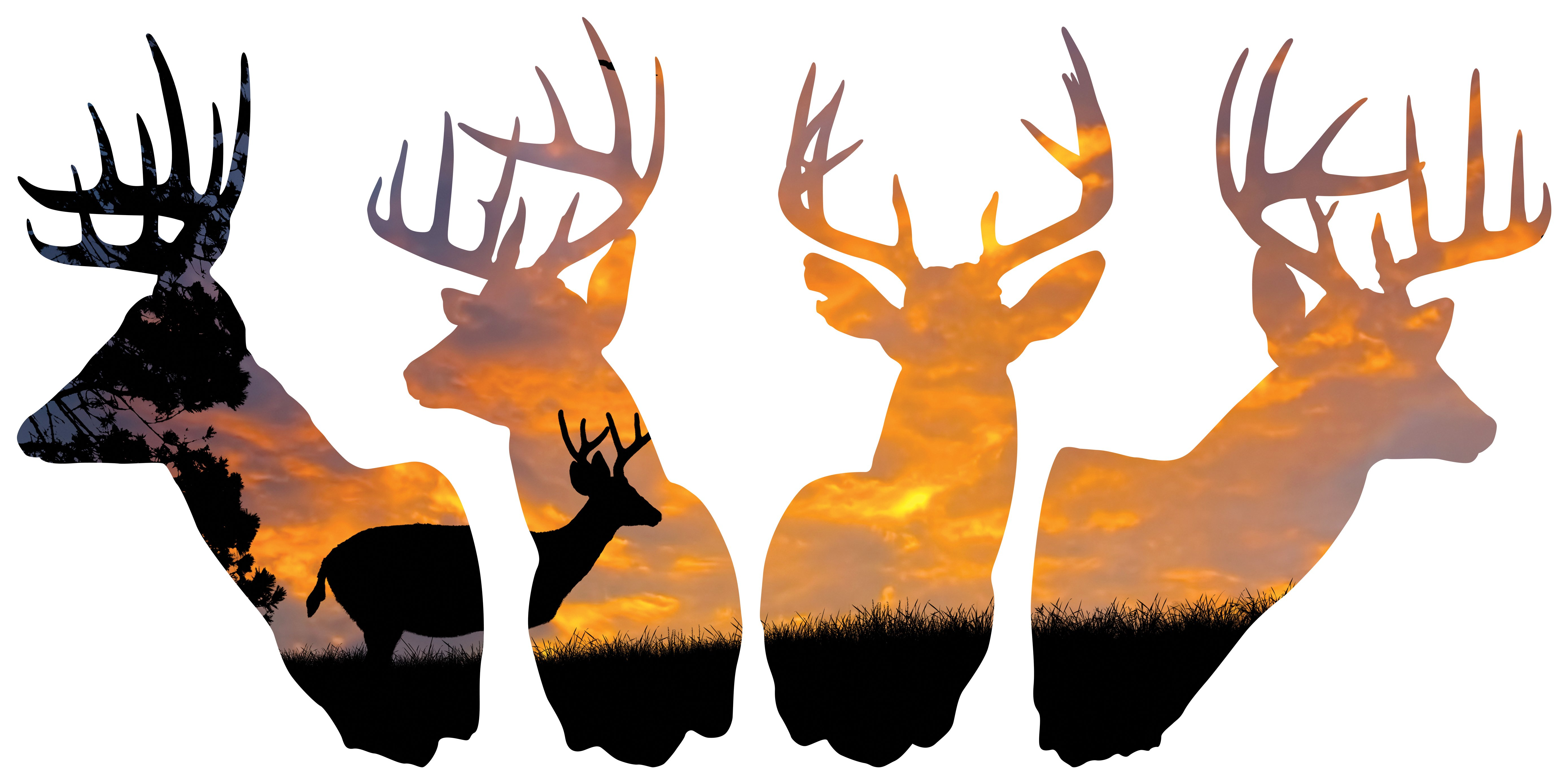 5555x2777 4 Deer Silhouette Hunting Background Large Wall Decals 4 Design