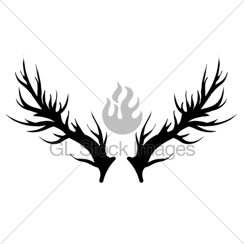 500x500 Deer Horns Silhouette Isolated Gl Stock Images