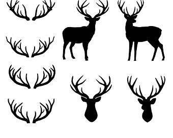 340x270 Deer With Antlers Etsy