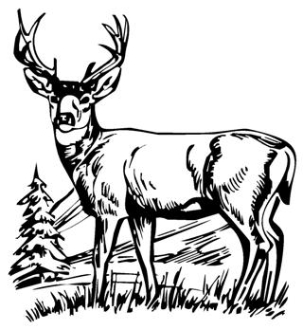 303x330 Deer Scene Decal Sticker
