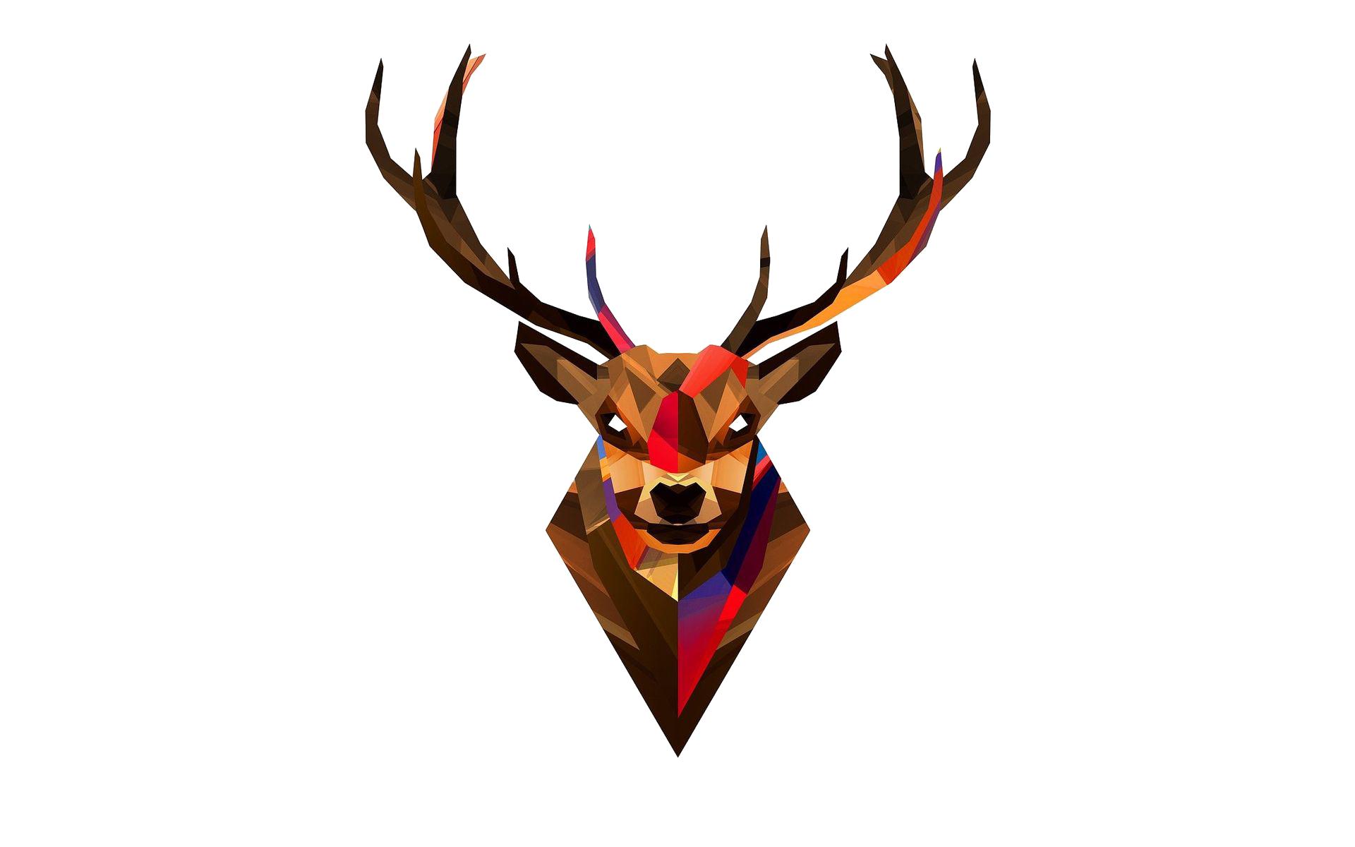 1920x1200 Deer Png Images Transparent Free Download
