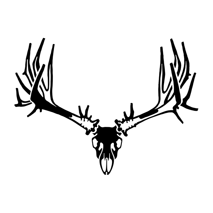 715x715 European Skull Mule Deer Window Decal