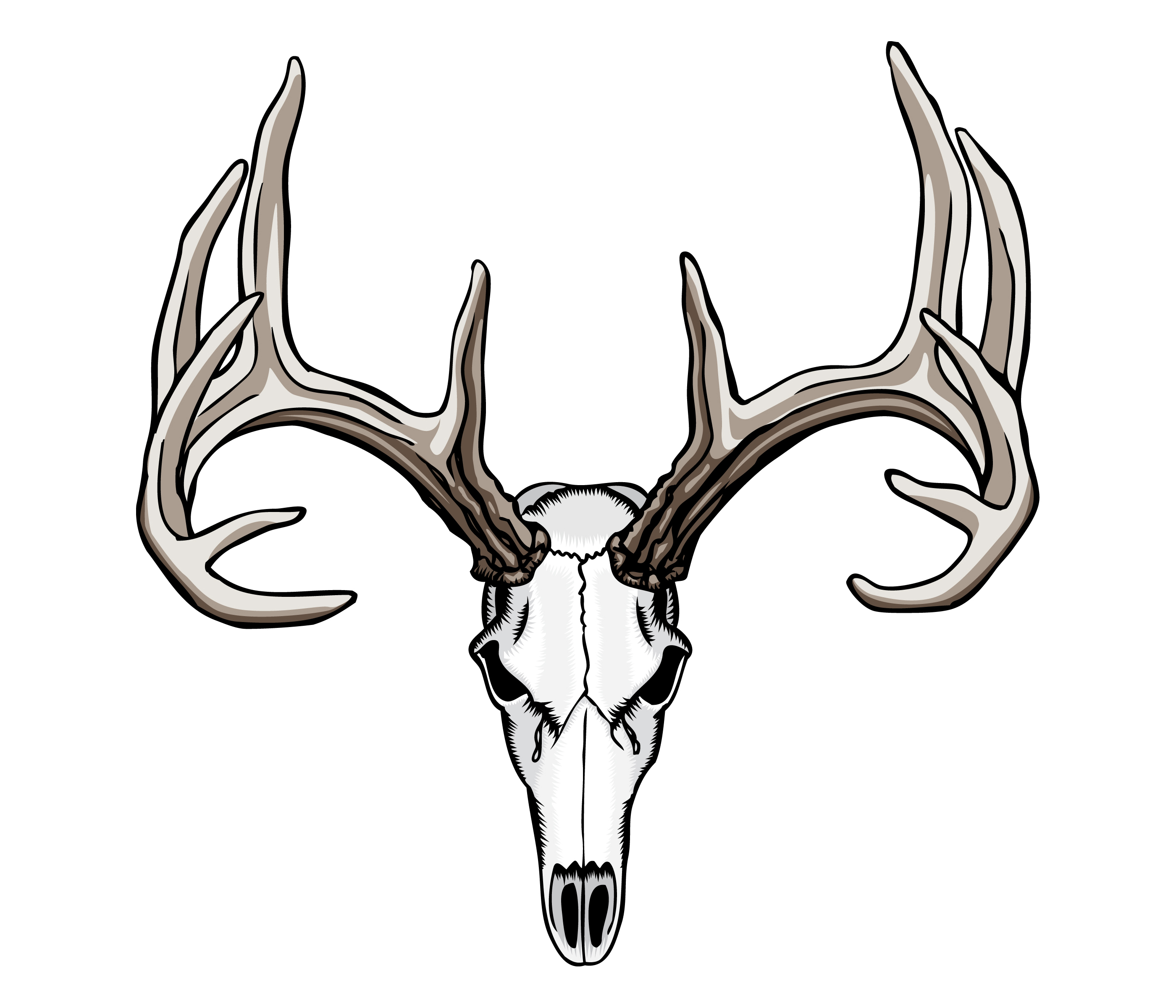2800x2400 Whitetail Deer Skull Tattoos Art Nouveau Deer