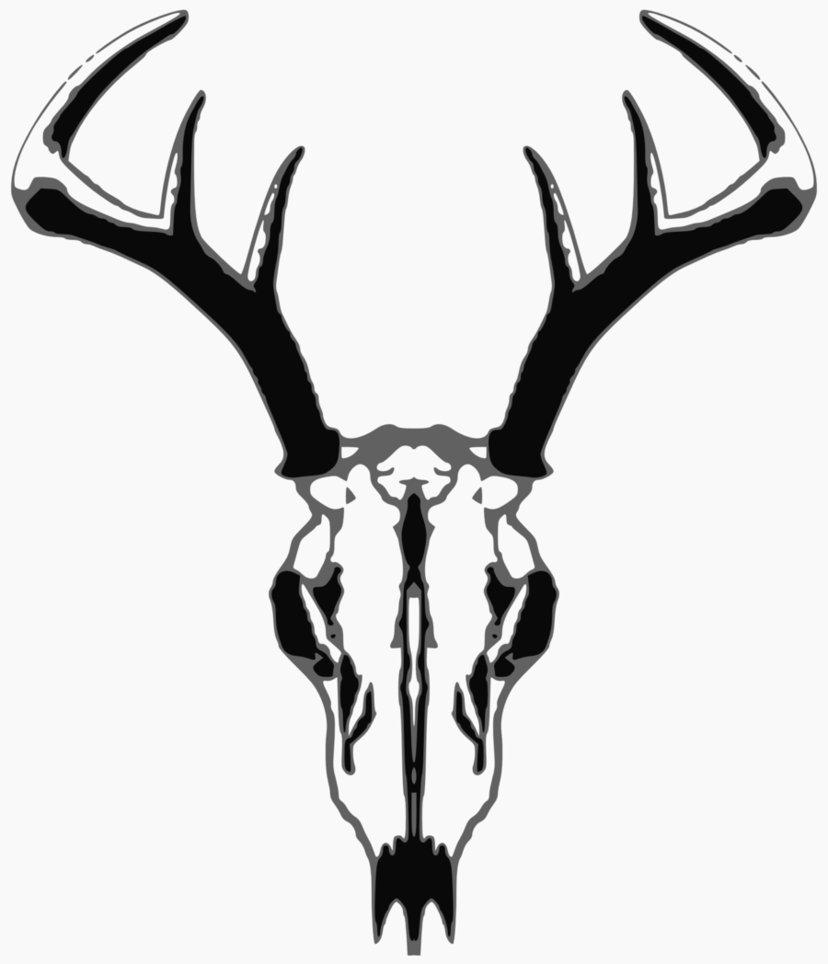 deer skull silhouette vector at getdrawings com free for personal rh getdrawings com deer skull mount vector mule deer skull vector