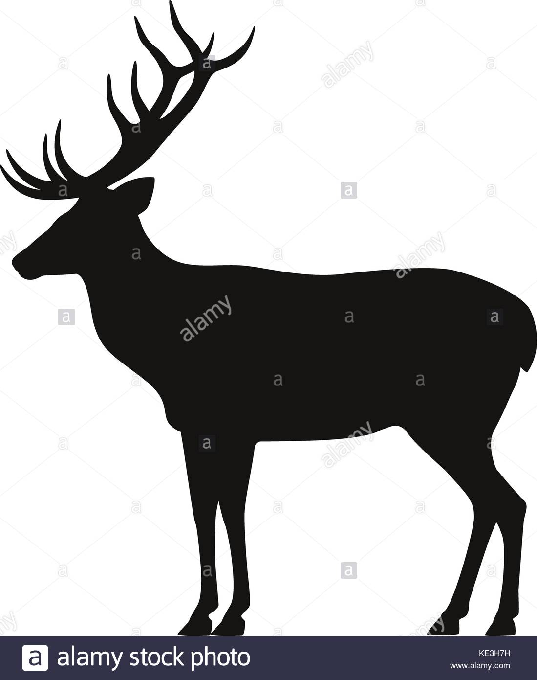 1099x1390 Vector Black Silhouette Horned Deer Icon Side View Stock Vector