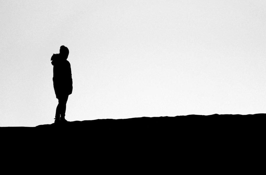 900x592 Desert Silhouettes V By Netsrotj