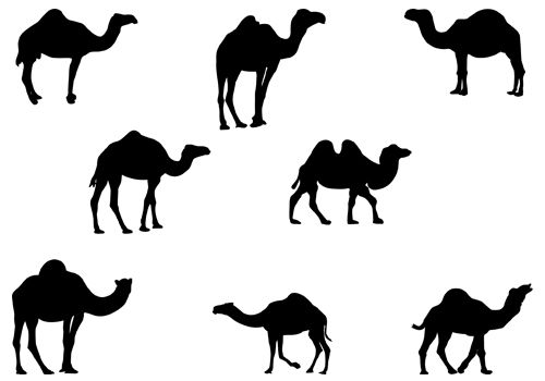 500x350 Animals Silhouette Vector