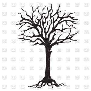 300x300 Detailed Silhouette Of A Round Deciduous Tree With No Leaves Gm