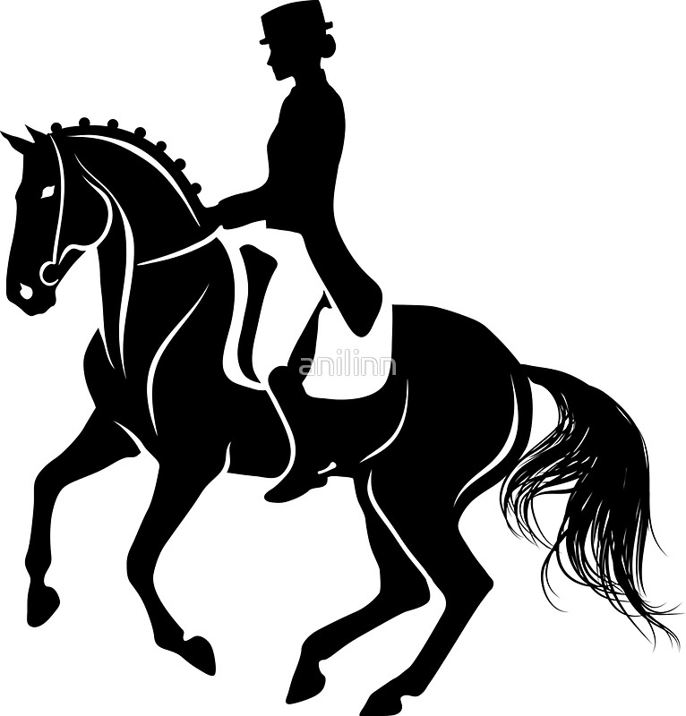 766x800 Detailed Silhouette Of A Dressage Horse Performing Pirouette