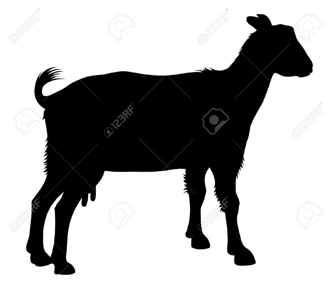 1300x1121 Detailed Vector Illustration Of Goat Silhouette Stock Vector