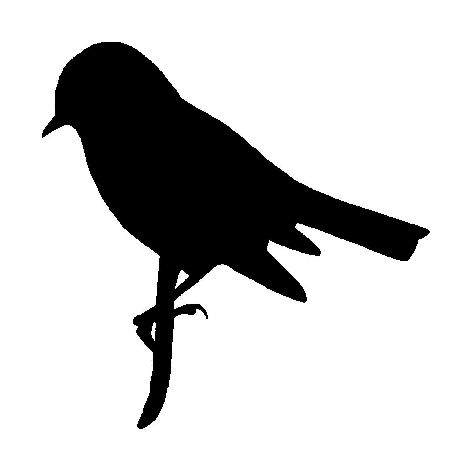 1538x1516 Digital Stamp Design Printable Bird Silhouette Commercial Use