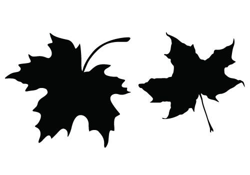 500x350 Decorate Your Dining Table With These Free Thanksgiving Leaf