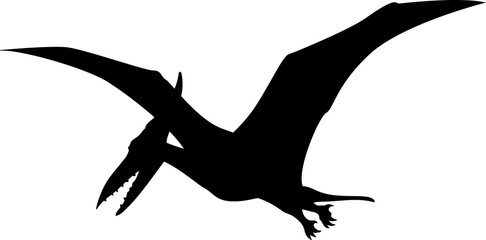 486x240 Pterodactyl Photos, Royalty Free Images, Graphics, Vectors