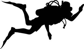 273x160 Springboard Diving Silhouette