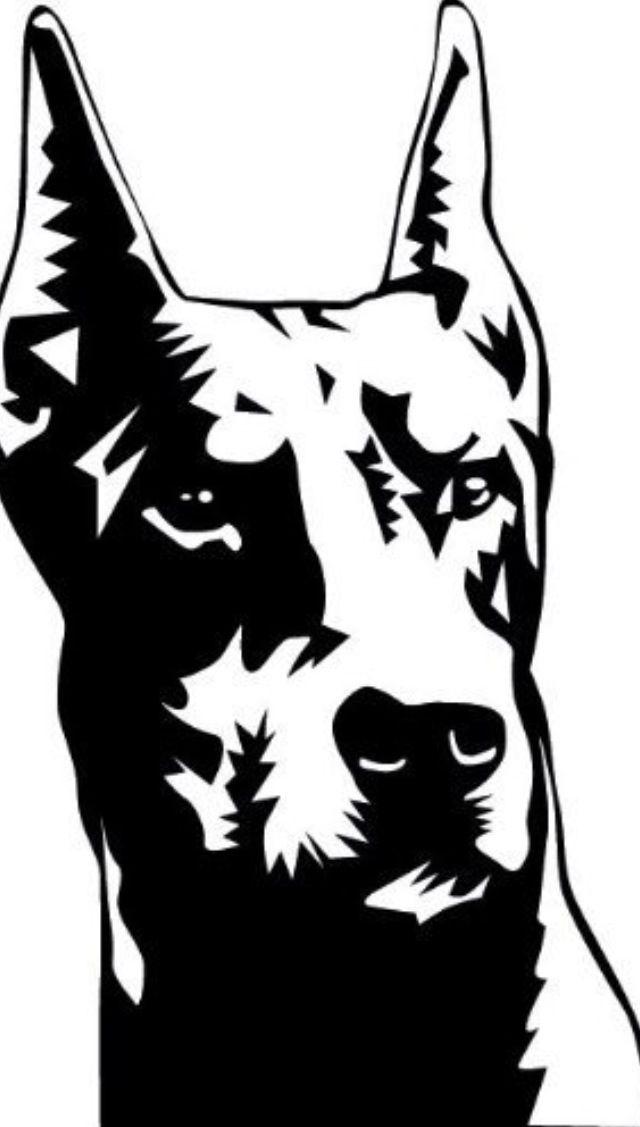 640x1127 Doberman. Doberman Dogs Dobermans, Dog