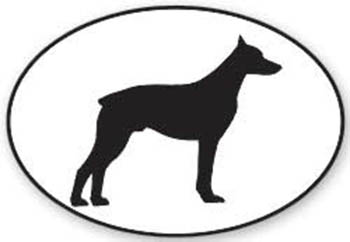 350x242 Doberman Declas Police K9, Military K9 And Schutzhund Working Dog