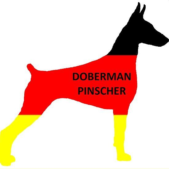 Doberman Silhouette