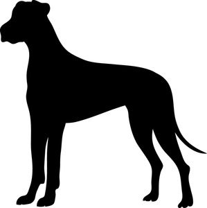 299x300 Image Detail For Great Dane Clipart Image