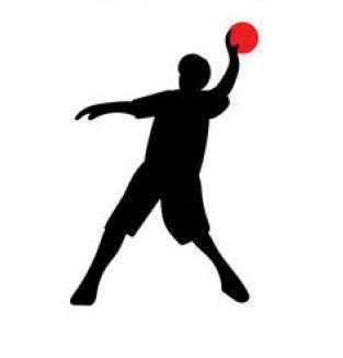 313x326 Benefit Dodgeball Tournament Returning To South Charleston Metro