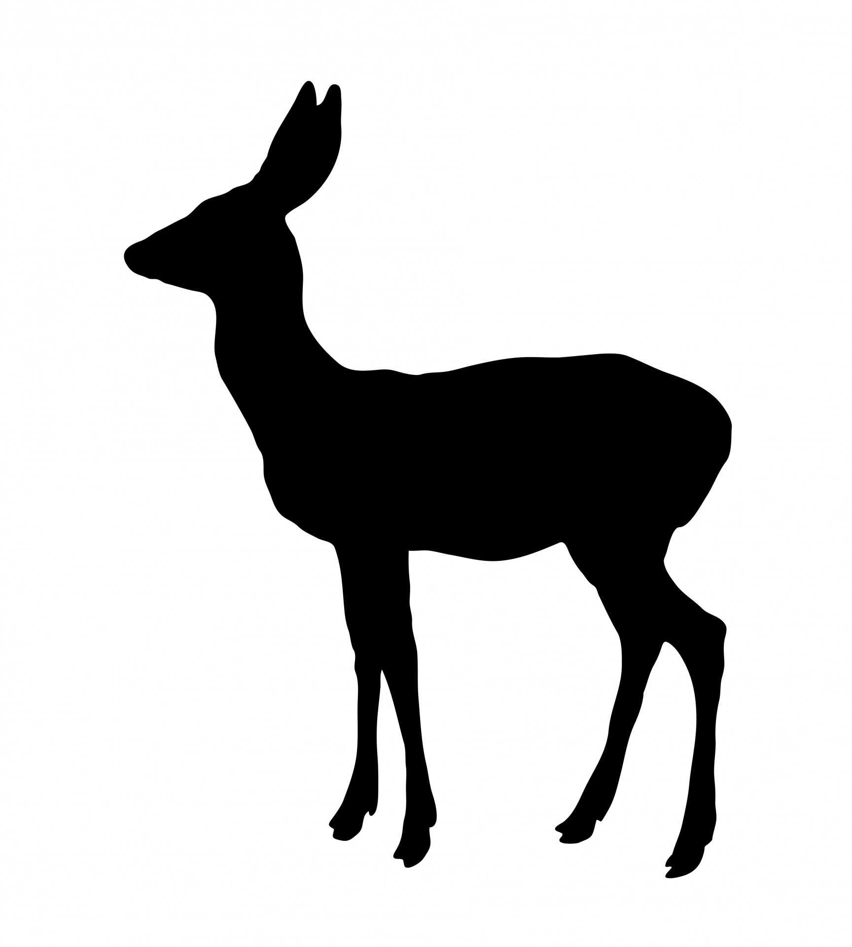 1728x1920 Deer Silhouette Free Stock Photo