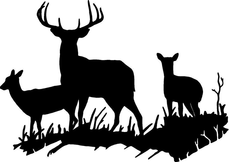 916x648 Deer Buck Doe Deer Family Wall Decal Home Decor Large Hunting 18