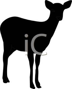 243x300 Silhouette Of A Doe Standing