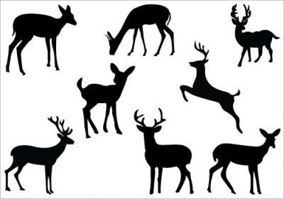 400x280 Deer Clipart Clipartaz Free Clipart Collection