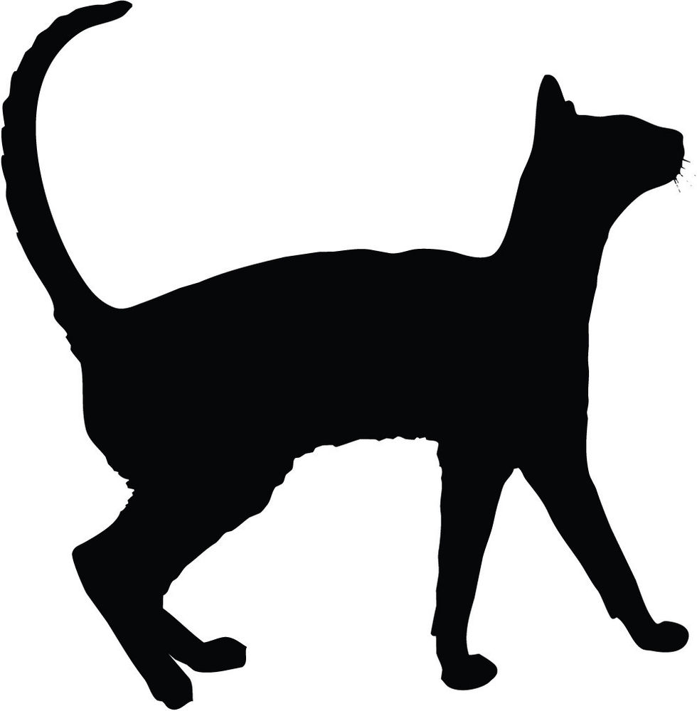 980x1000 Dog And Cat Silhouette Clipart Library