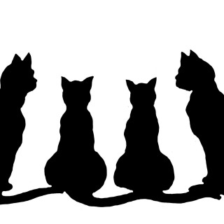 320x320 Cat Clipart Four Many Interesting Cliparts