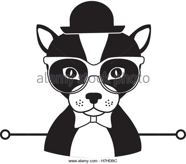 612x540 Silhouette Dog Cartoon Glasses Bow Stock Photos Amp Silhouette Dog