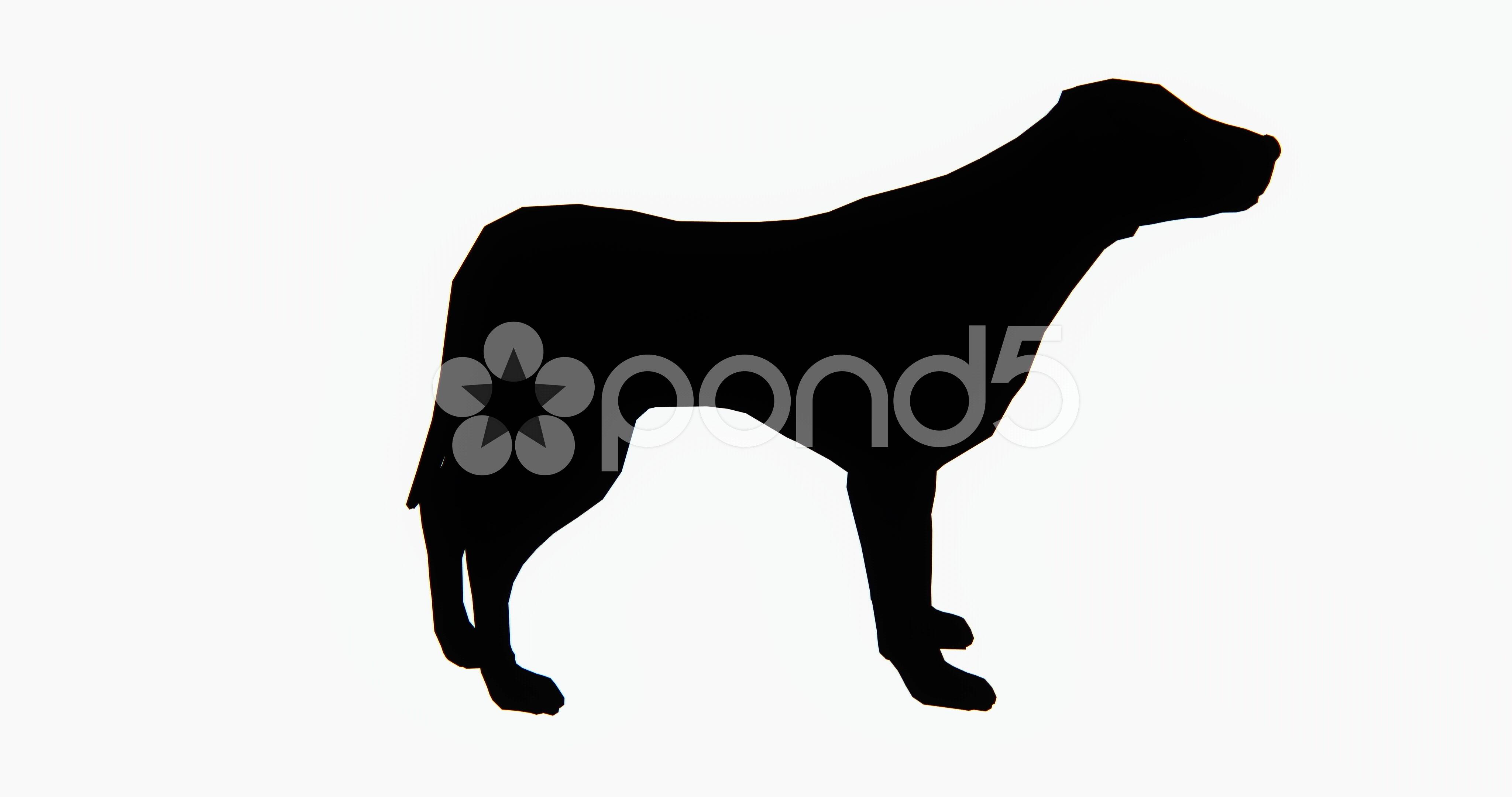 4096x2160 Video 4k Dog,3d Cartoon,lovely Pet,animal Silhouette. ~