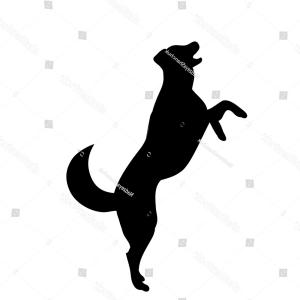 300x300 Isolated On White Background Silhouette Dog Ardiafm