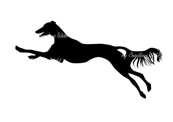 570x403 Saluki Dog Silhouette Svg Clipart Persian Greyhound Printable