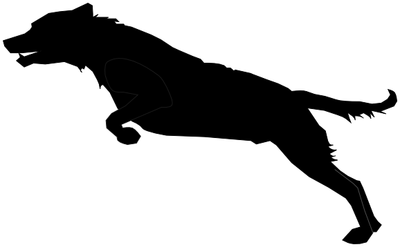 578x358 Dog Jumping Silhouette