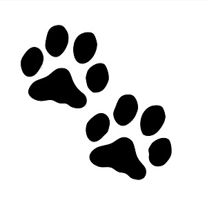300x300 Sensational Pictures Of Dog Paws Hello Kitty Coloring Pages