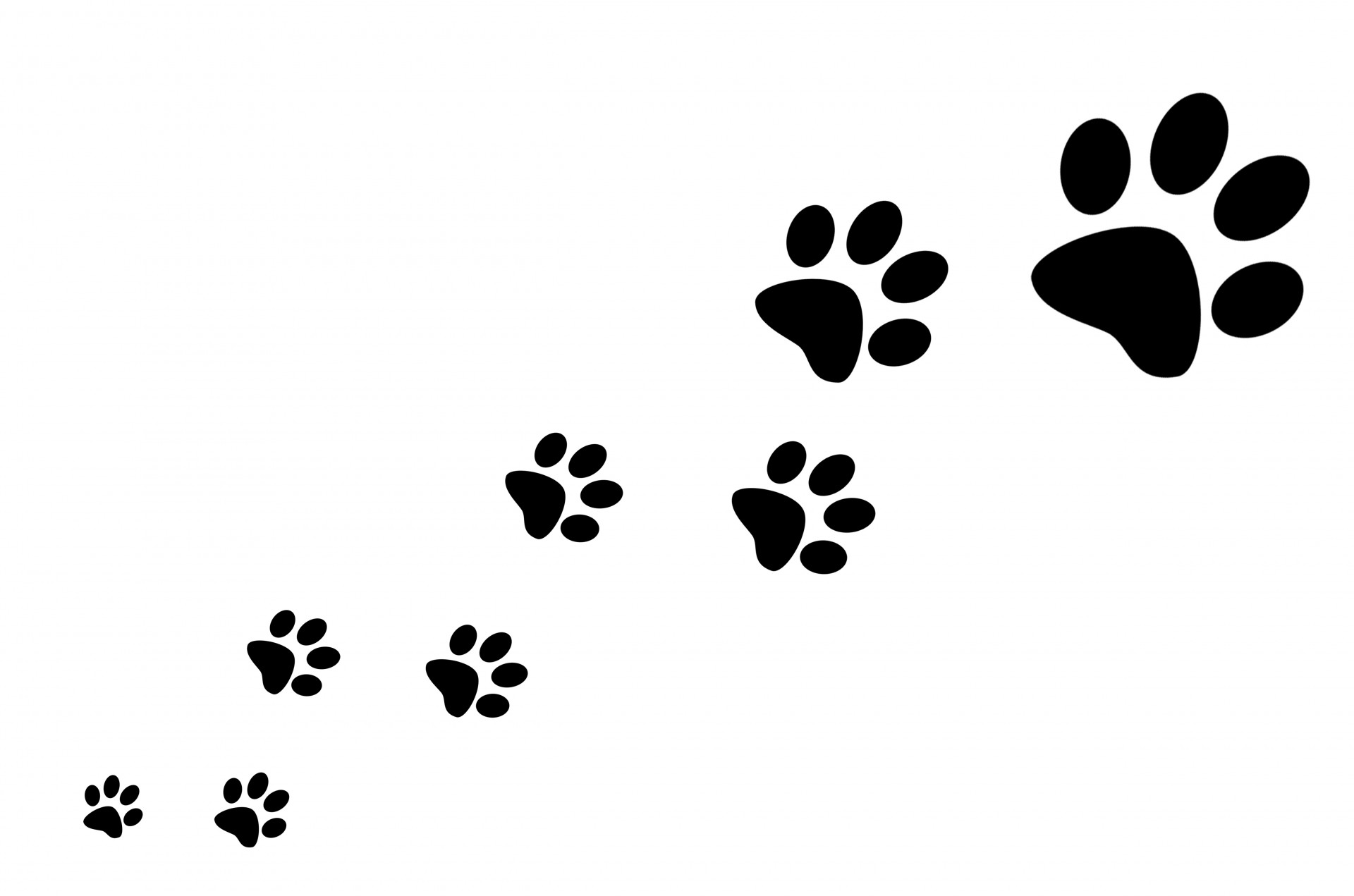dog paw print silhouette at getdrawings com free for personal use