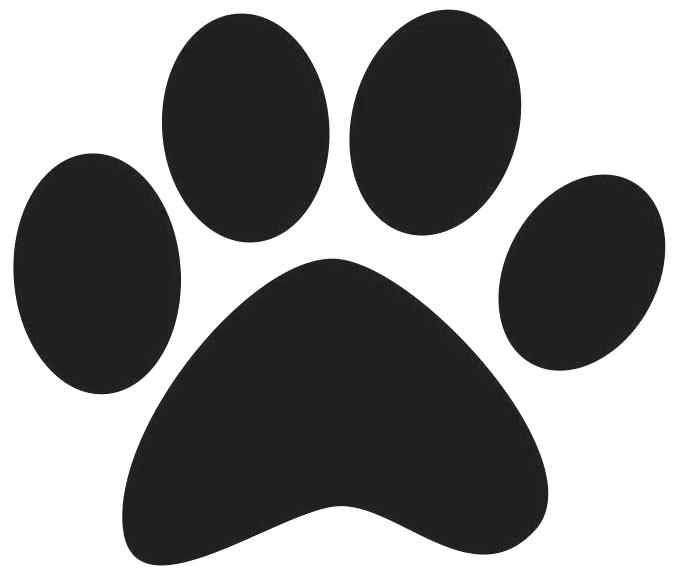 675x574 Pet Paw Pet Paw Print Icon On Stainless Steel Modern Industrial