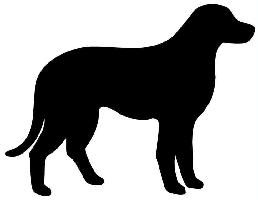825x641 Dog Outline