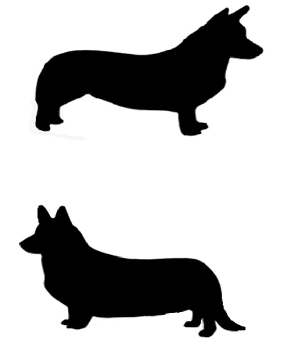 570x674 Pembroke Or Cardigan Welsh Corgi Dog Profile Silhouette Window