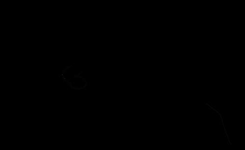 500x307 Jumping Dog Silhouette Vector Graphics Public Domain Vectors