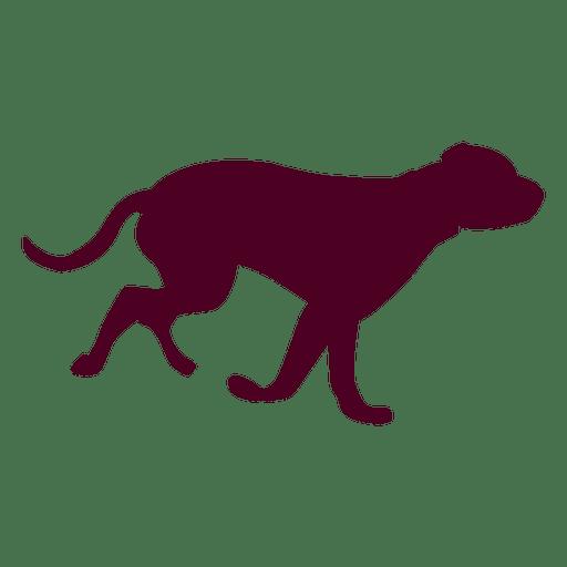 512x512 Dog Running Sequence 1