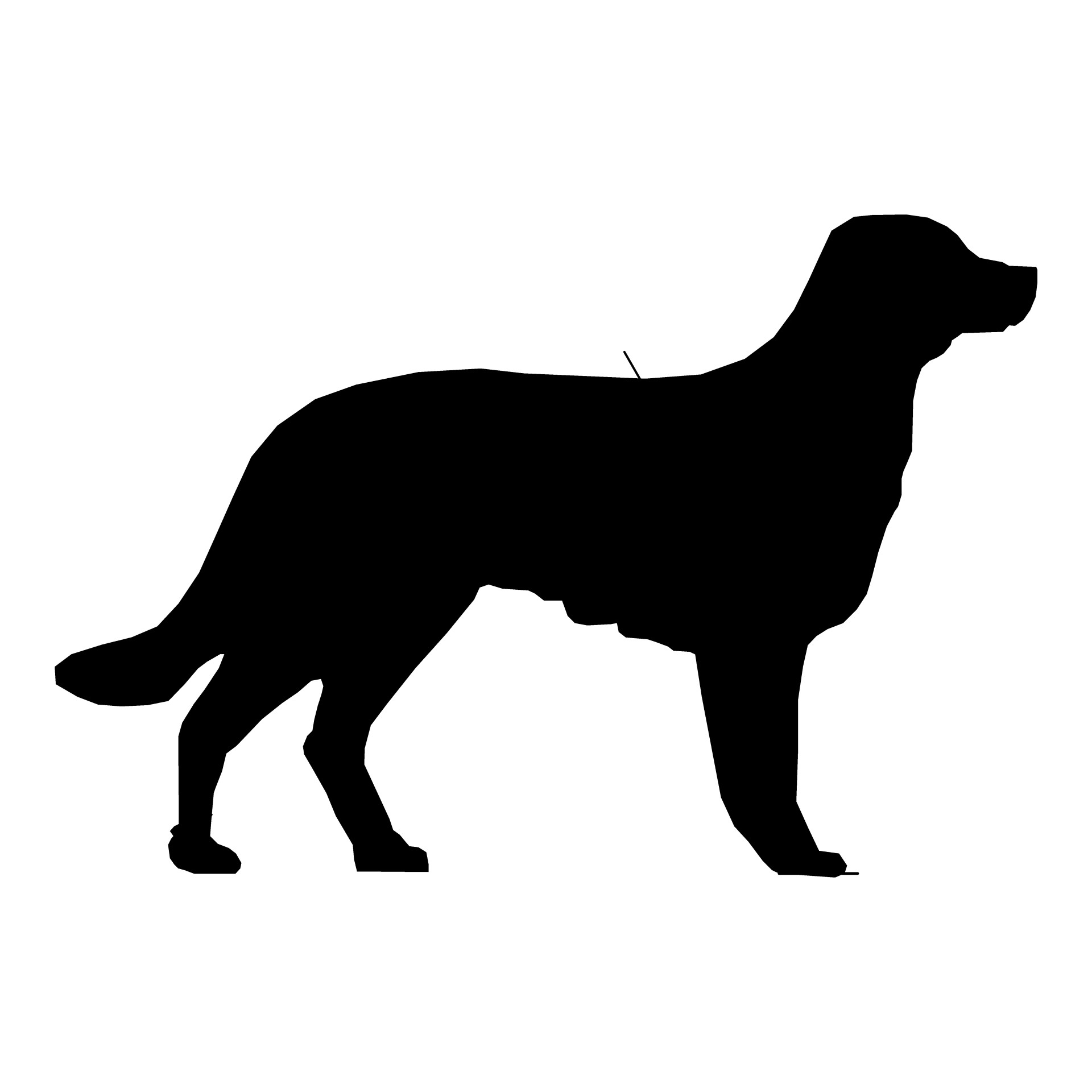 1920x1920 Dog Silhouette Drawing 08 Free Stock Photo