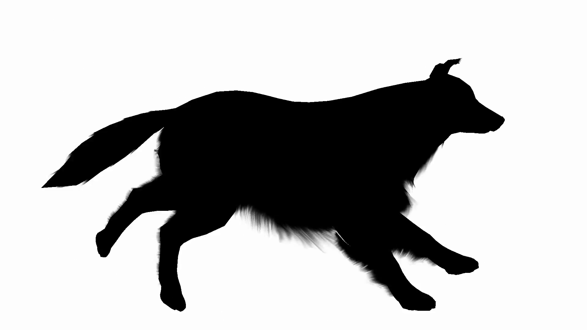 1920x1080 Profile Of Dog Running In Silhouette Motion Background