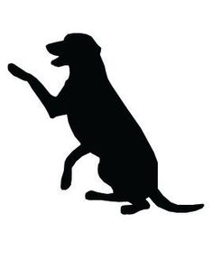 236x288 Labrador Nose Silhouette Dogs Wall Art Stickers Wall Decal